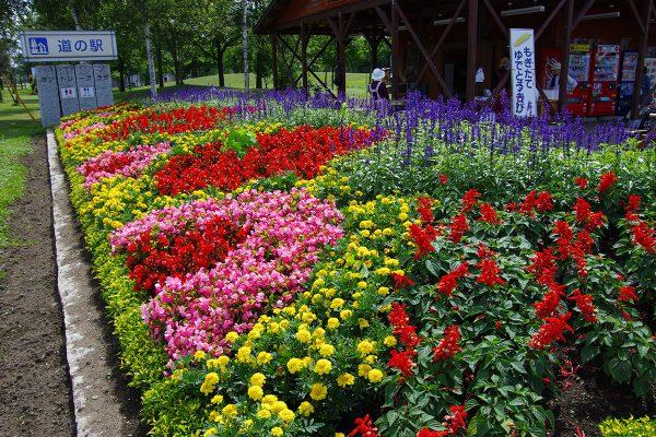 flower-fes01
